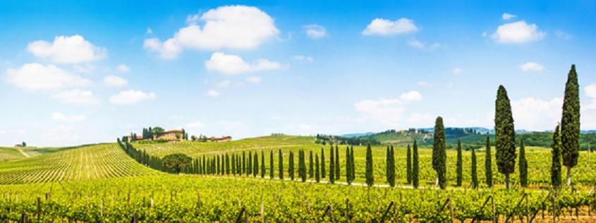 Schöne Landschaft mit Weinberg, Chianti , Toskana, Italien