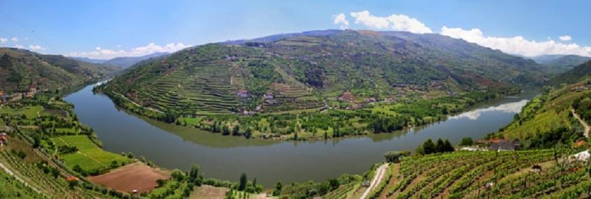 Tal des Flusses Douro mit Weinbergen