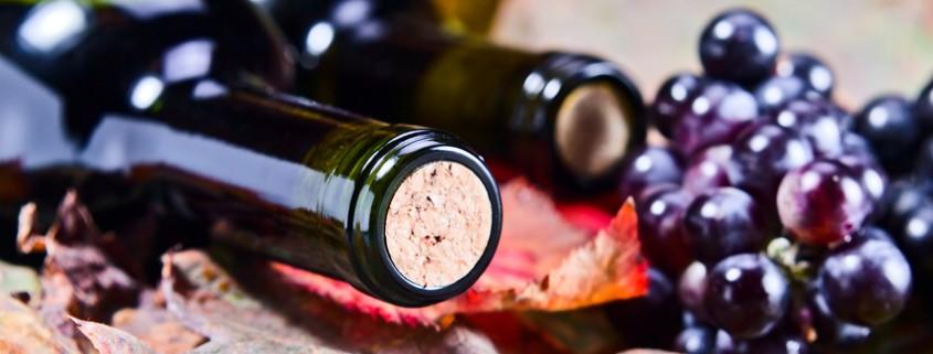 Flasche Rotwein und Trauben
