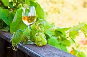 Weißwein im Weinberg