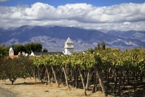 Weinanbauland Argentinien