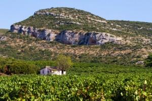 Weinanbaugebiet Nemea, Griechenland