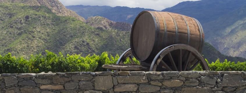 Weinfass auf einem Weingut